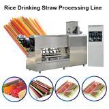 Automatic Pasta Straw Machine Rice Straw Extruder